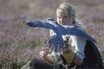 Totally devoted: falconry expert Emma Ford